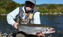 Steve with a Nestucca river summer steelhead