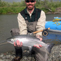 chrome silver salmon